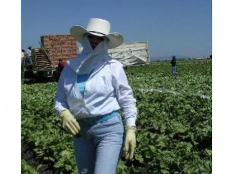 A female farworker in the fields wearing a wide-brimmed hat, neck covering, and gloves.
